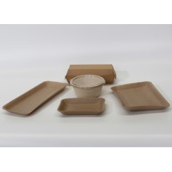 Compostable Trays